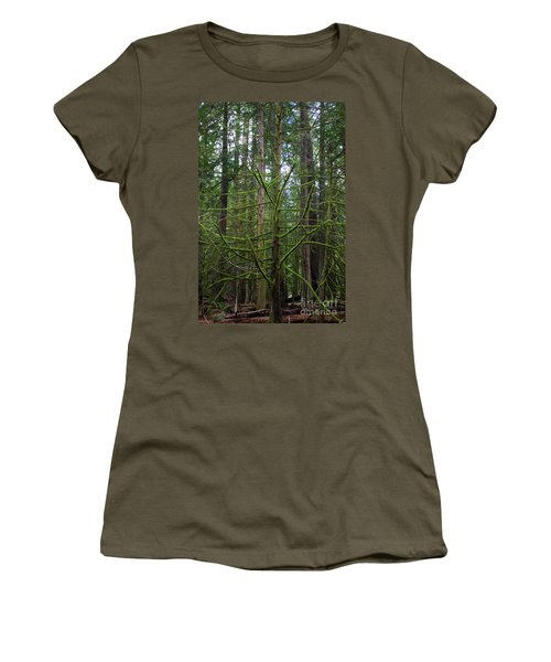 Moss Covered Tree Women's T-Shirt (Athletic Fit)