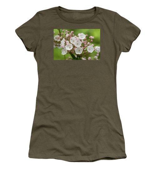 Mountain Laurel Women's T-Shirt (Junior Cut) by Henri Irizarri