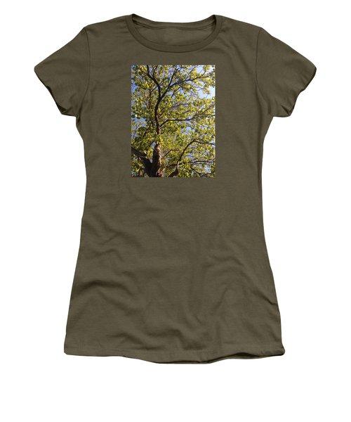 Multiplicity  Women's T-Shirt (Junior Cut) by Nora Boghossian