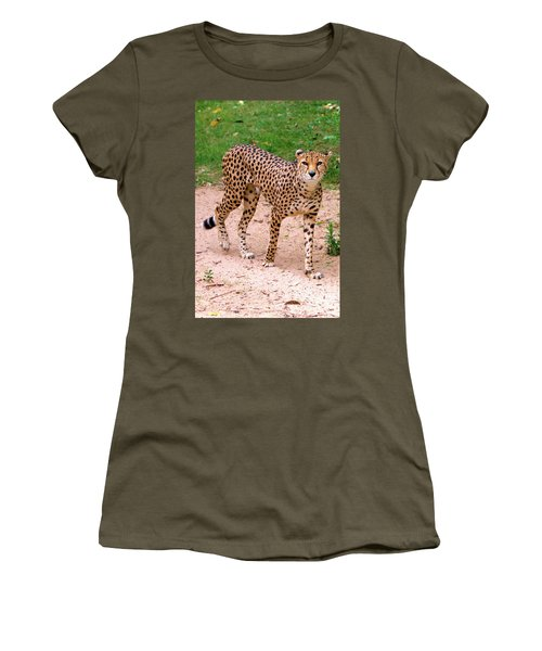 North African Cheetah Women's T-Shirt (Athletic Fit)