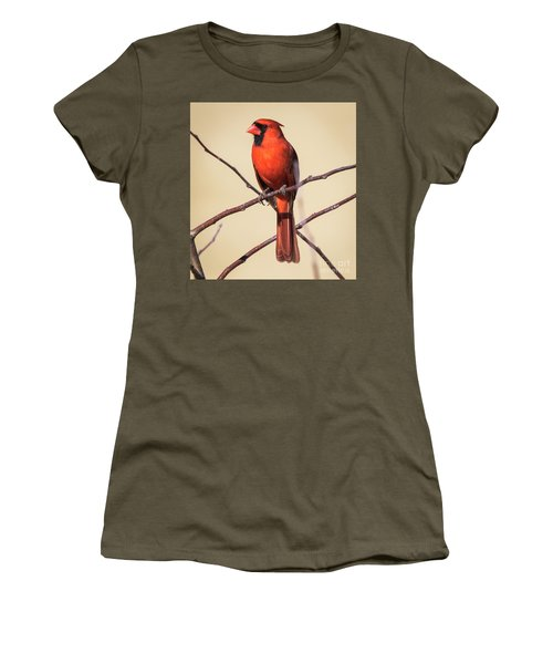 Northern Cardinal Profile Women's T-Shirt (Athletic Fit)