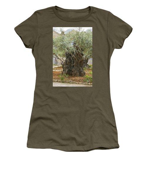 Old Olive Trees Gethsemane Jerusalem Women's T-Shirt