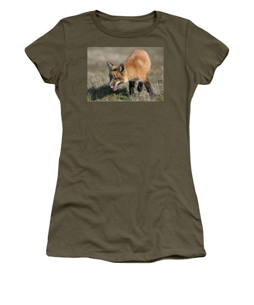 Women's T-Shirt (Junior Cut) featuring the photograph On The Prowl by Elvira Butler
