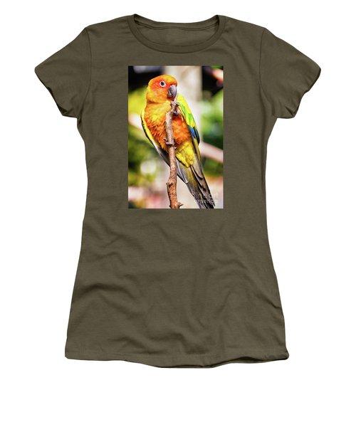 Orange Yellow Parakeet Women's T-Shirt (Athletic Fit)