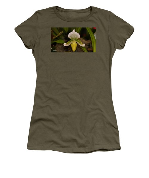 Orchid Flower 42 Women's T-Shirt (Junior Cut) by Gary Crockett