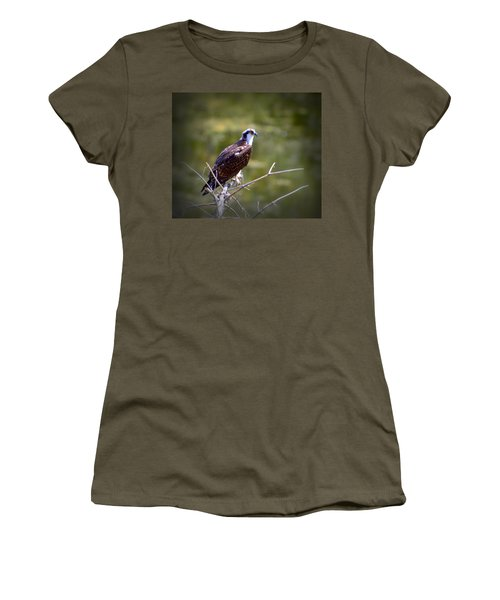 Osprey In Wait Women's T-Shirt (Athletic Fit)