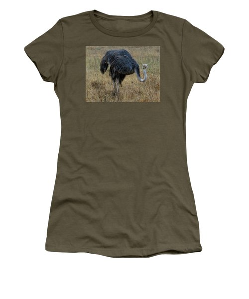 Ostrich In The Grass 1 Women's T-Shirt (Athletic Fit)