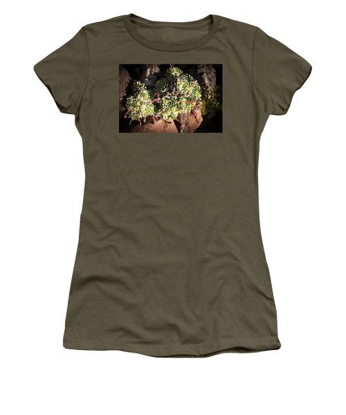 Women's T-Shirt (Junior Cut) featuring the photograph Out Door Succulents by Catherine Lau