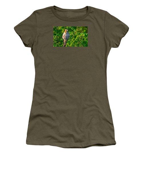 Out On A Limb 3 Women's T-Shirt (Junior Cut) by Brian Stevens