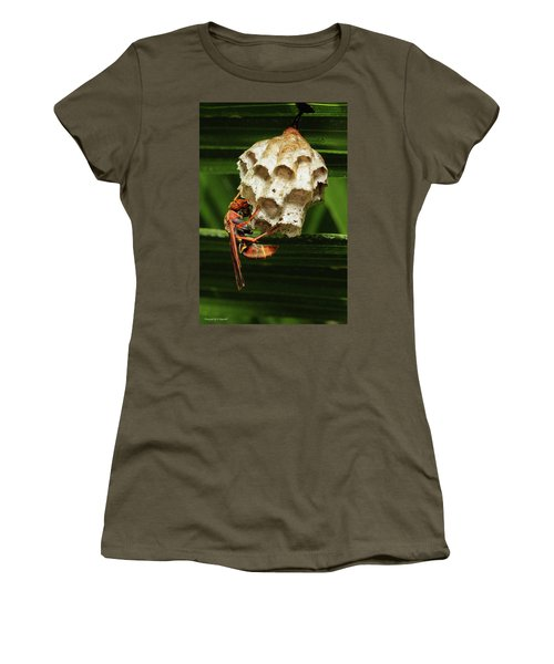 Paper Wasps 00666 Women's T-Shirt (Junior Cut) by Kevin Chippindall