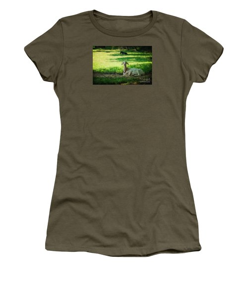 Peaceful Pasture Women's T-Shirt