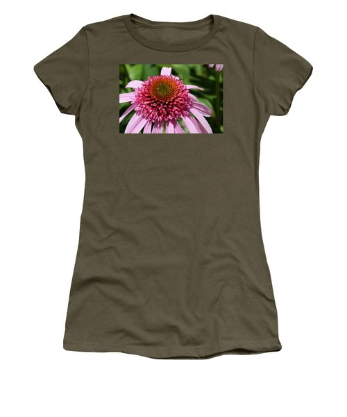 Pink Coneflower Close-up Women's T-Shirt