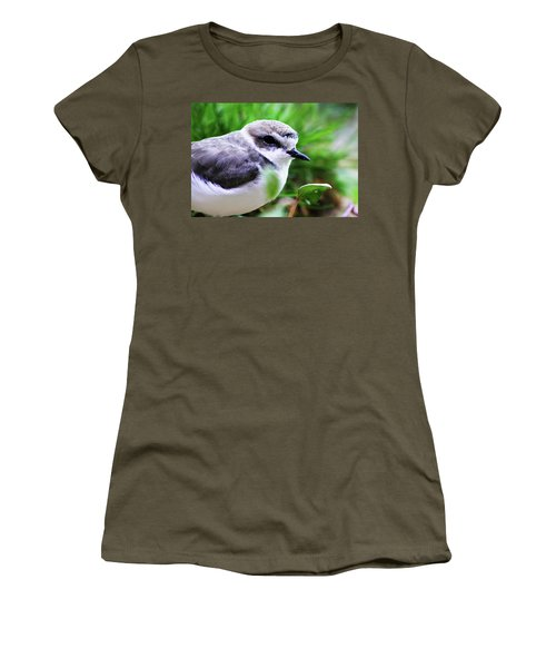 Women's T-Shirt (Junior Cut) featuring the photograph Piping Plover by Anthony Jones