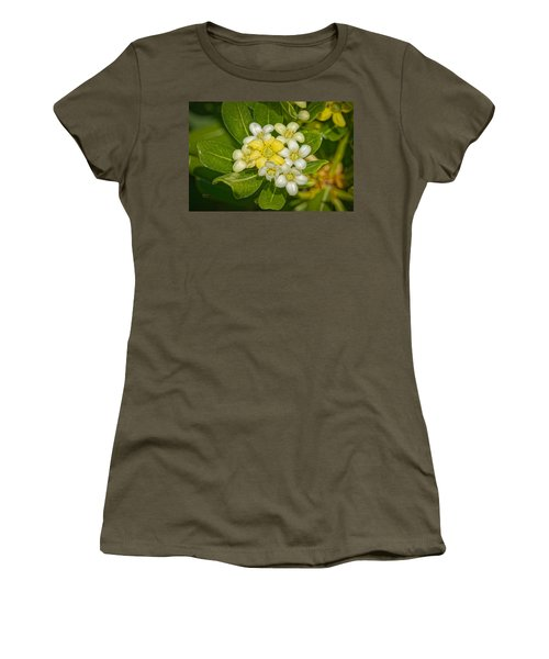 Pittosporum Flowers Women's T-Shirt