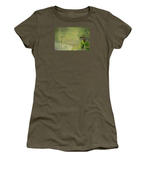 Plate 087 - Hummingbird Grunge Series Women's T-Shirt (Athletic Fit)