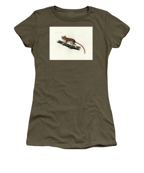 Pygmy Mouse Lemur Women's T-Shirt