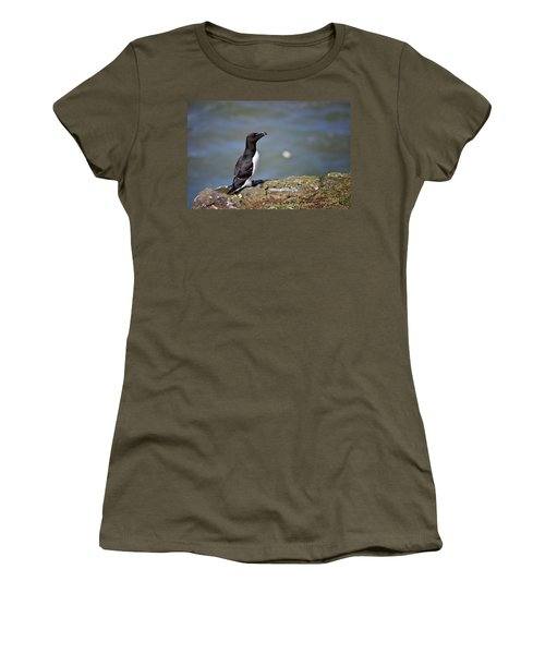 Razorbill Women's T-Shirt (Junior Cut) by Vicki Field