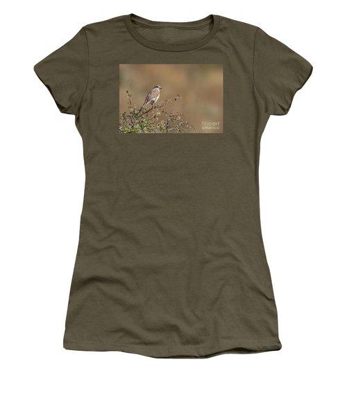 Red-backed Shrike Juv. - Lanius Collurio Women's T-Shirt (Junior Cut) by Jivko Nakev