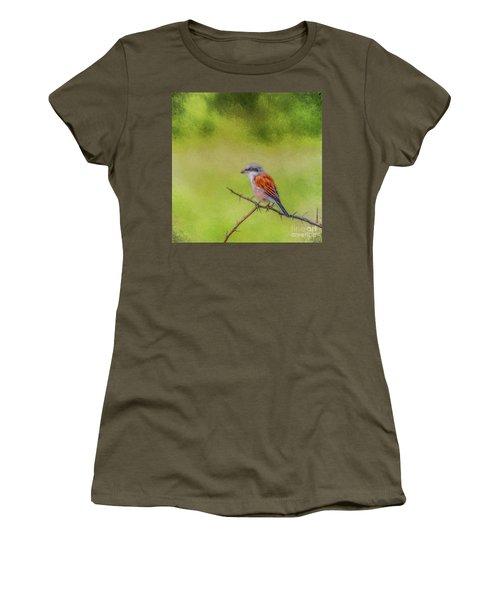 Red-backed Shrike Women's T-Shirt