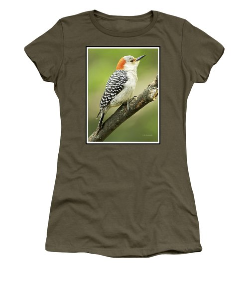 Red Bellied Woodpecker, Female On Tree Branch Women's T-Shirt (Athletic Fit)