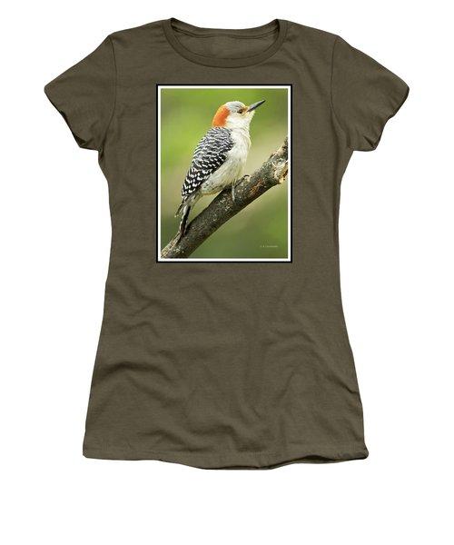 Red Bellied Woodpecker, Female On Tree Branch Women's T-Shirt