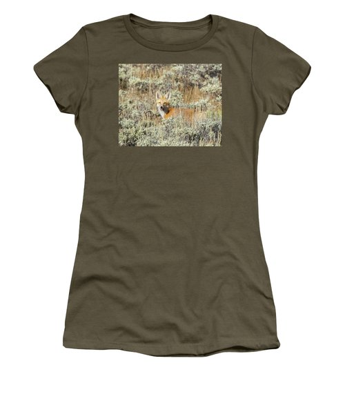 Red Fox In Sage Brush Women's T-Shirt (Athletic Fit)