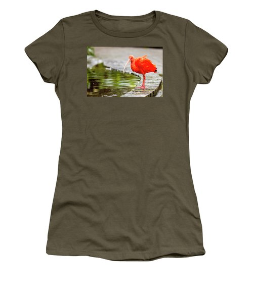 Women's T-Shirt (Junior Cut) featuring the photograph Red Ibis by Alexey Stiop