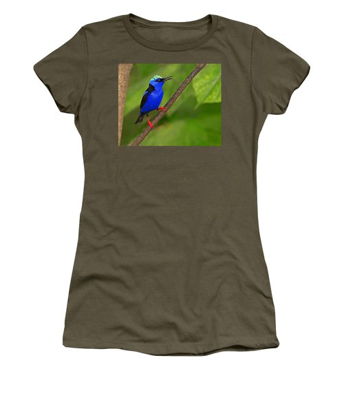 Red-legged Honeycreeper Women's T-Shirt (Junior Cut) by Tony Beck