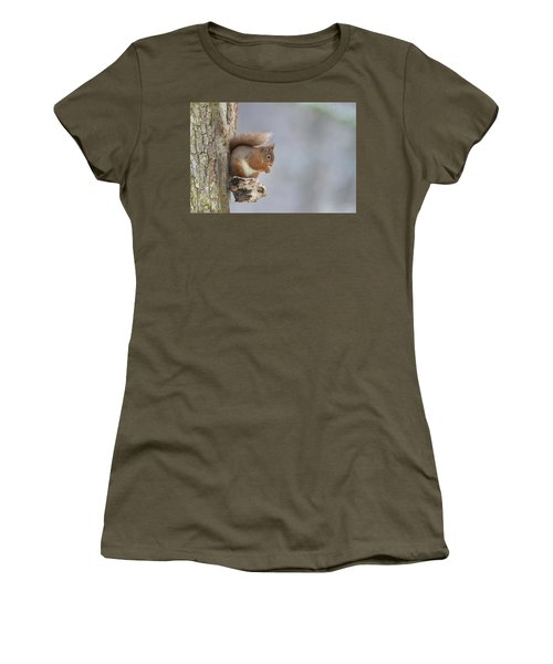 Red Squirrel On Tree Fungus Women's T-Shirt