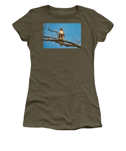Red Tail Hawk Perched Women's T-Shirt (Athletic Fit)