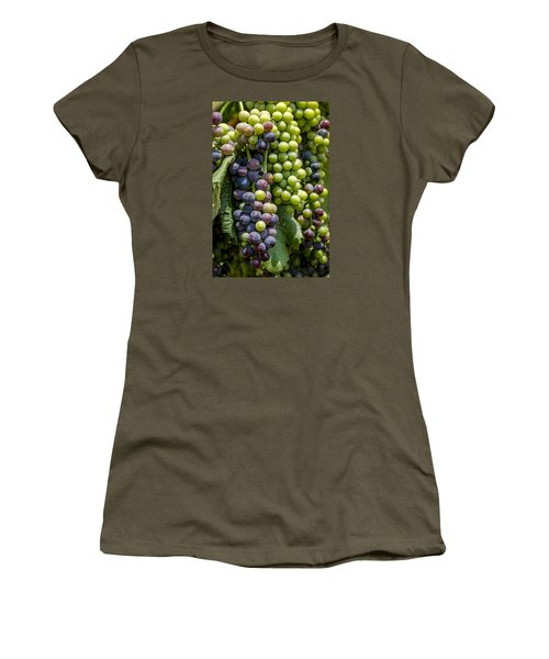 Red Wine Grapes In The Vineyard Women's T-Shirt