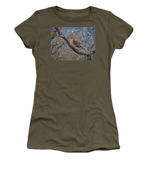 Robin In A Tree Women's T-Shirt (Junior Cut) by Keith Boone