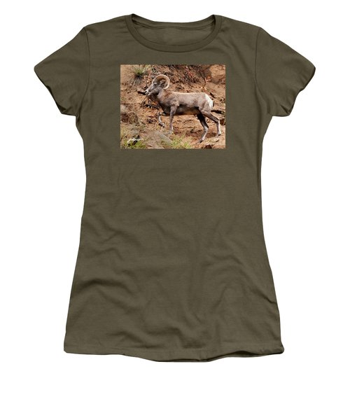 Rocky Mt. Big Horn Sheep Women's T-Shirt (Athletic Fit)