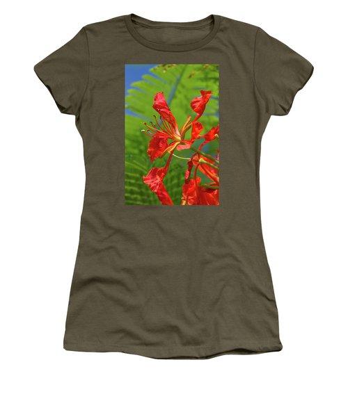 Royal Poinciana Flower Women's T-Shirt