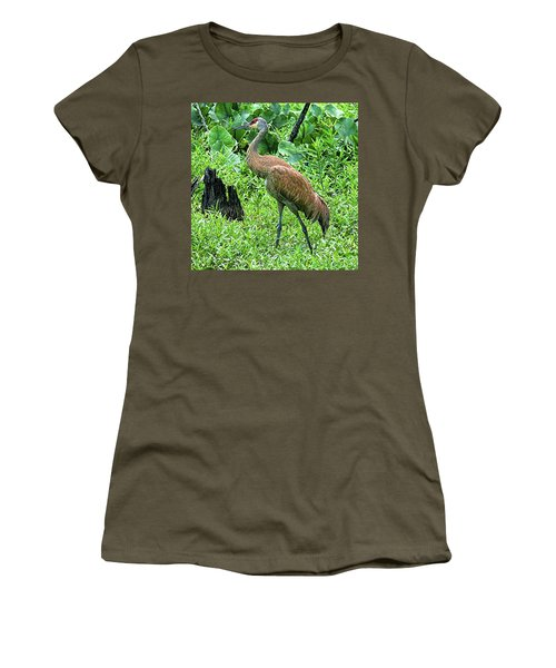 Sandhill Crane At Sandy Ridge Reservation Women's T-Shirt
