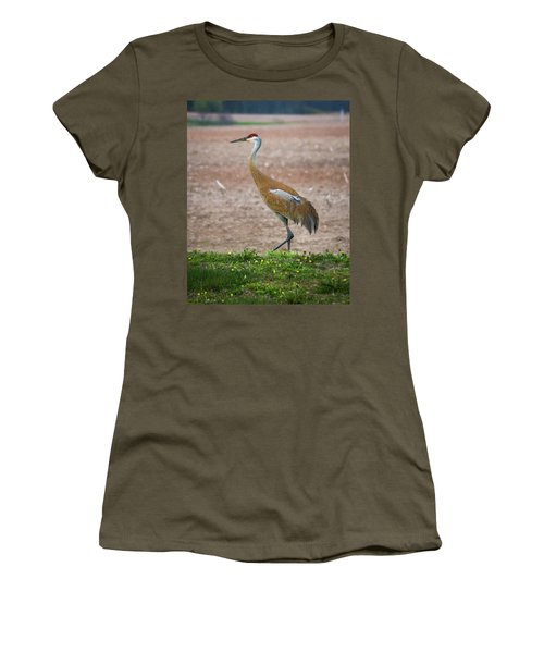 Women's T-Shirt (Athletic Fit) featuring the photograph Sandhill Crane In Profile by Bill Pevlor