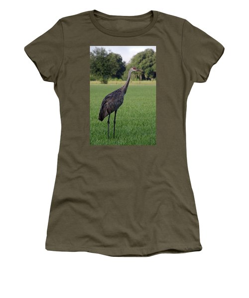 Women's T-Shirt (Junior Cut) featuring the photograph Sandhill Crane by Richard Rizzo