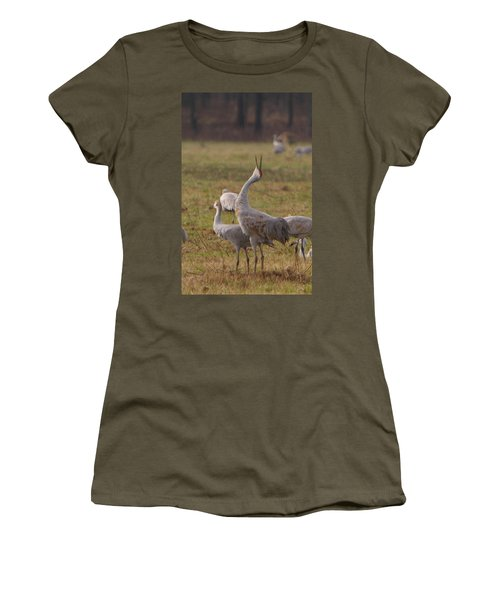 Women's T-Shirt (Junior Cut) featuring the photograph Sandhill Delight by Shari Jardina