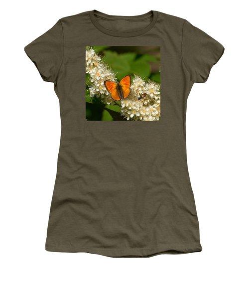 Women's T-Shirt (Junior Cut) featuring the photograph Scarce Copper 2 by Jouko Lehto