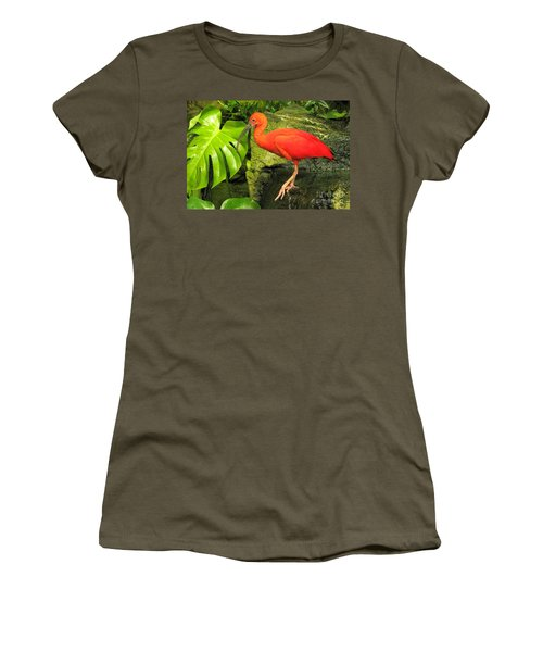 Scarlet Ibis Women's T-Shirt (Athletic Fit)
