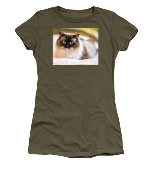Seal Point Bicolor Ragdoll Cat Women's T-Shirt