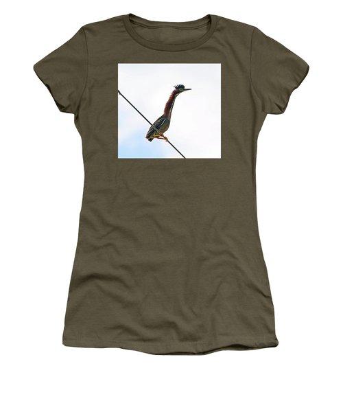 Shaggy Crest Of The Green Heron Women's T-Shirt