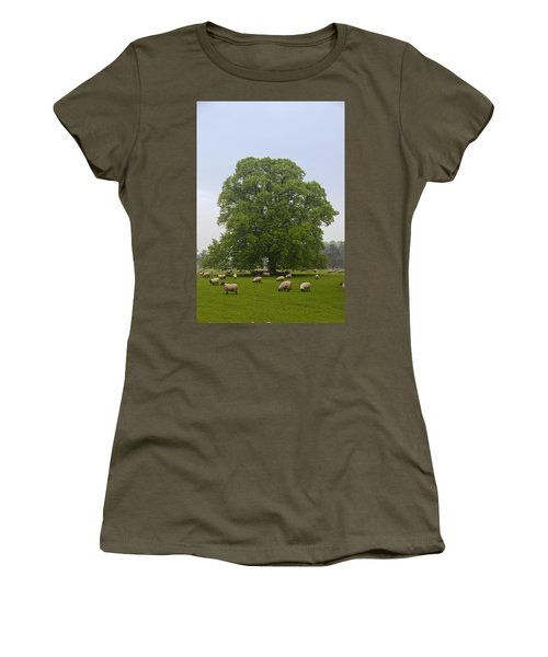 Sheep Grazing On The Grass Women's T-Shirt