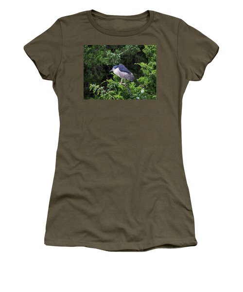 Shore Bird Roosting In A Tree Women's T-Shirt (Athletic Fit)