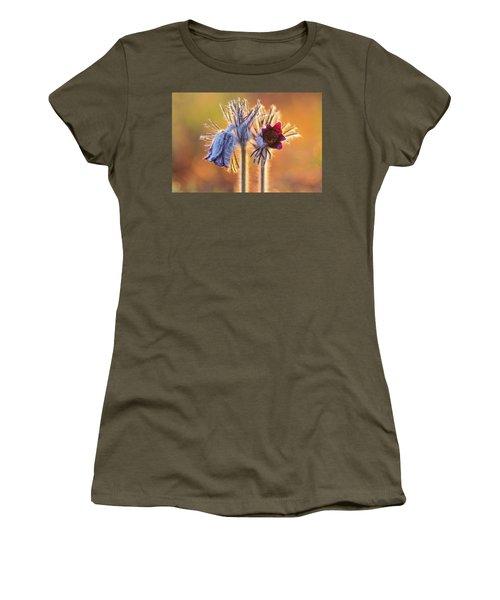 Small Pasque Flower, Pulsatilla Pratensis Nigricans Women's T-Shirt