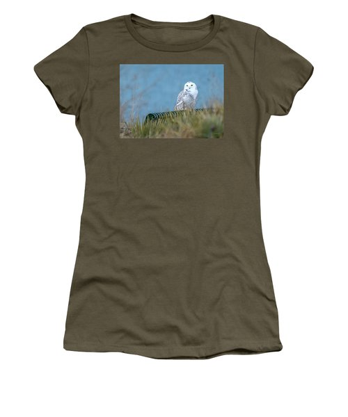 Snowy Owl On A Park Bench Women's T-Shirt