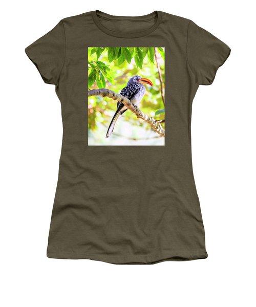 Women's T-Shirt (Junior Cut) featuring the photograph Southern Yellow Billed Hornbill by Alexey Stiop