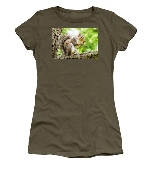 Squirrel Eating On A Branch Women's T-Shirt