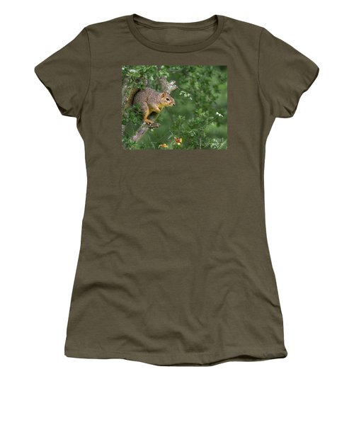 Squirrel In A Tree Women's T-Shirt (Athletic Fit)