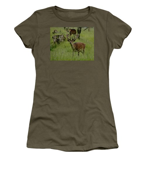 Stag Of The Herd. Women's T-Shirt